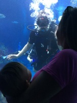 Daddy scuba diving in the tank
